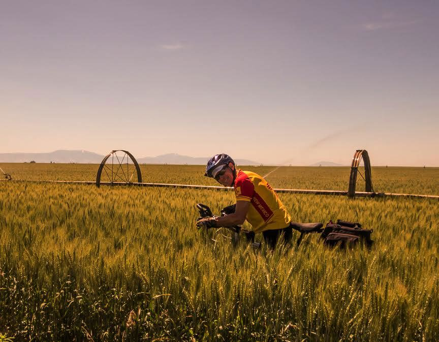 Photo of Kim and bicycle in a field of wheet