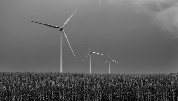 Beautiful wind turbines in black and white